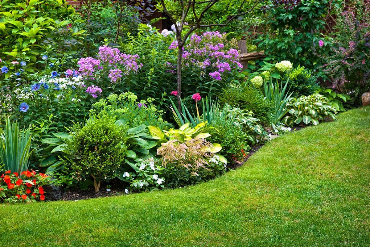 Garten Neuanlage